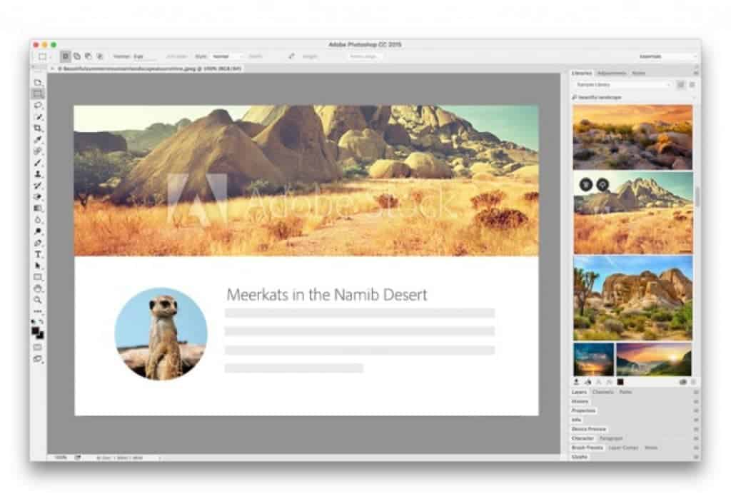 Adobe Stock - El Mejor Servicio para Diseñadores + Prueba Gratis! 6