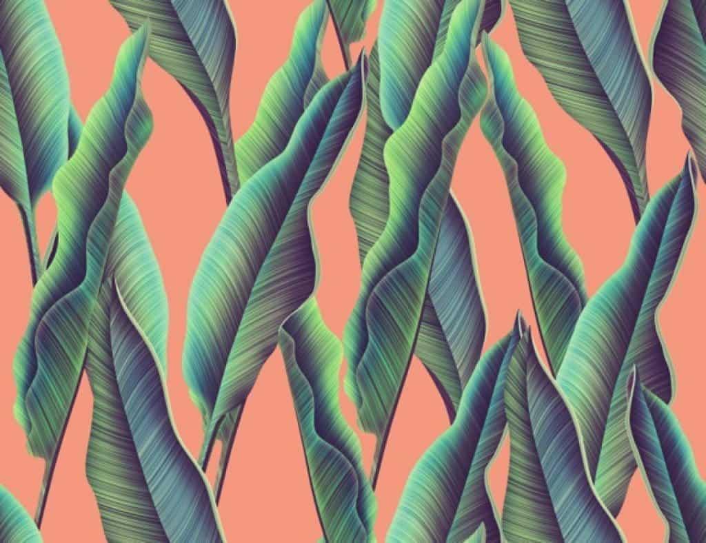 Patrón de monstera tropical y hojas de palmera