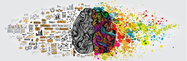 Cerebro Humano Hemisferios Logico Creativo