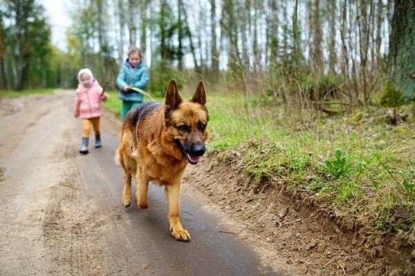 niñas paseando perro exterior
